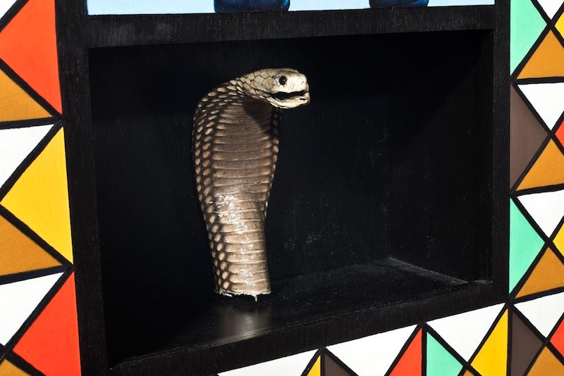 Taxidermy - Cobra